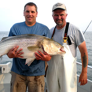 orient point fishing charters